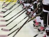 Summer Power Skating Development Program