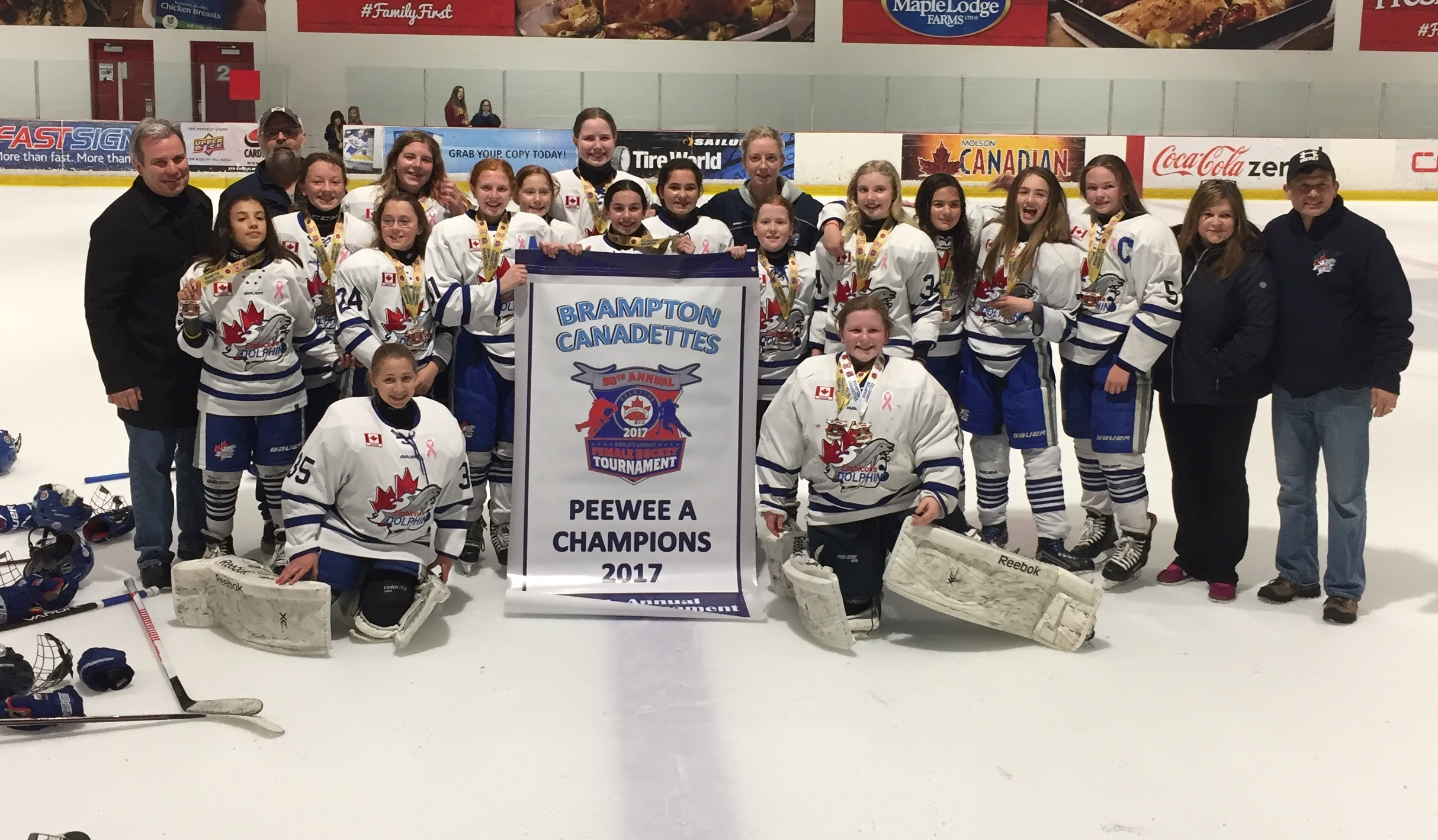 PeeWee A Win Gold at the 2017 Brampton Tournament